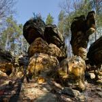 Hell Rocks near Nieklan / Skałki Piekło pod Niekłaniem