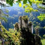 Ojcow National Park  / Ojcowski Park Narodowy