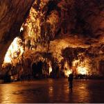 Postojna Cave / Postojnske jame