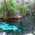 Reserve Blue Springs / Rezerwat Niebieskie Źródła
