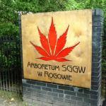 Rogow Arboretum / Arboretum w Rogowie